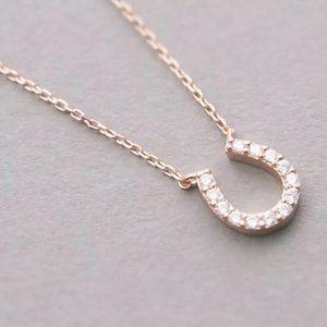Rose Gold Horseshoe necklace